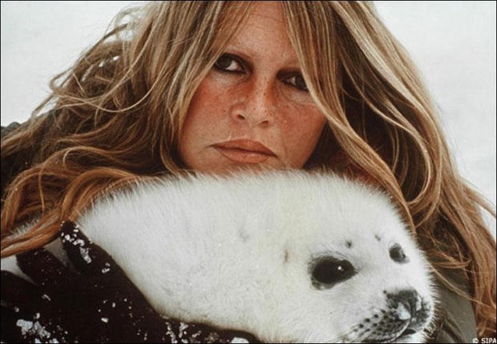 27 05 12 Dedica Brigitte Bardot Restiamo Animali