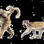 17/11/13 – Il Parco dell'Abatino; i vescovi per gli animali nei circhi; la Lav e la modifica dellaCostituzione